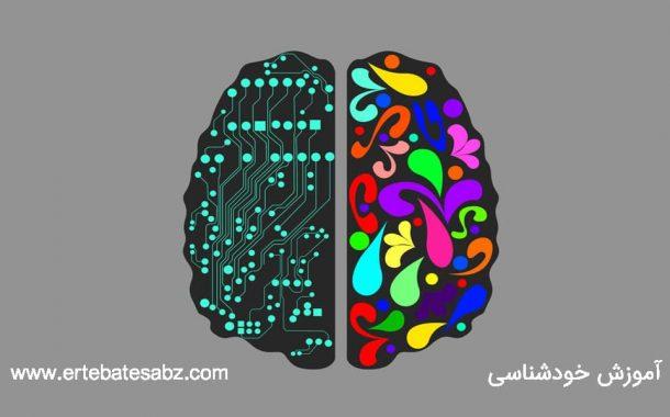 عقلانیت چیست؟ بزرگان دنیا در مورد عقلانیت چه می گویند!